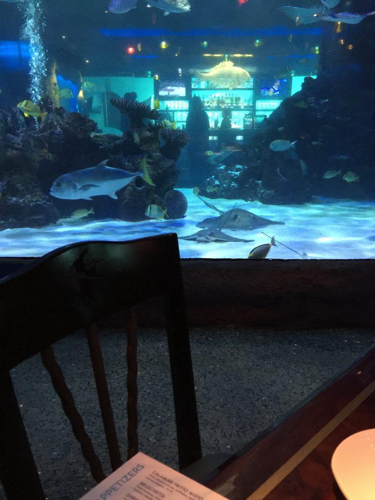 Aquarium Restaurant view of fish